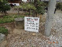 池辺 鎌足稲荷神社 (のぼり)
